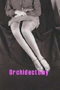 Orchidectomy for the Transsexual Woman